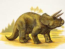 انقراض الحيوانات