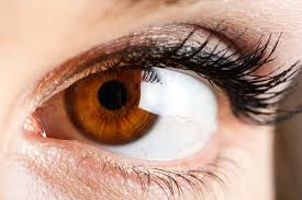 بروتين العين 1