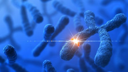 جينات جديدة 1