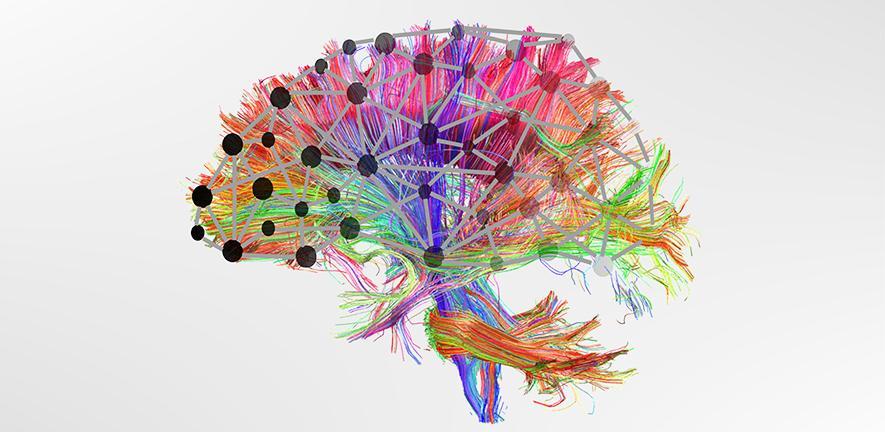 دماغ 45