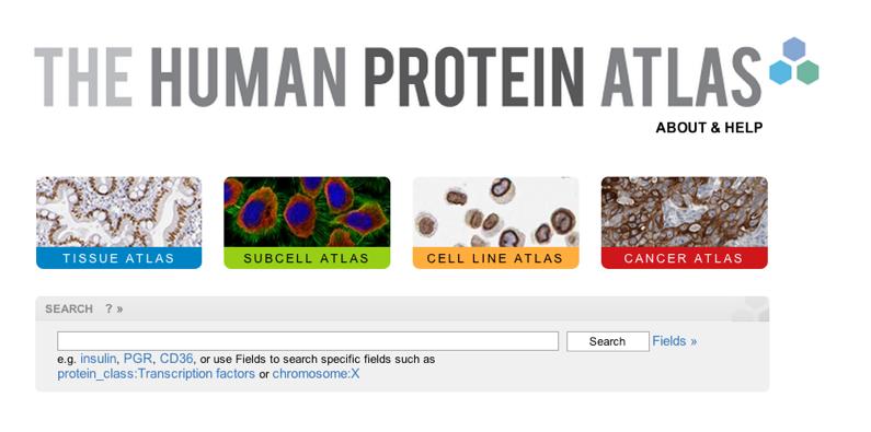 رسم خرائط البروتينات