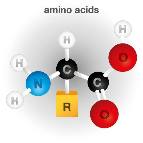 amino ac4